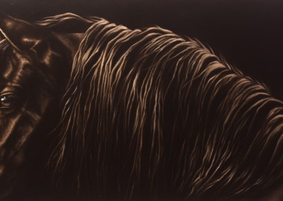 """Friesian Glow"", portrait of a friesian horse, original oil painting by Wendy Beresford"