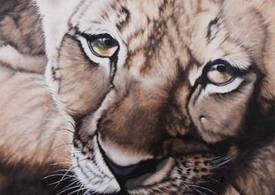 Lion cub, original oil painting by Wendy Beresford