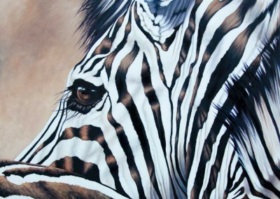 """Coquette"", zebra profile, original oil painting by Wendy Beresford"