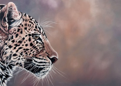 """Endangered"", oil painting of leopard profile by Wendy Beresford"