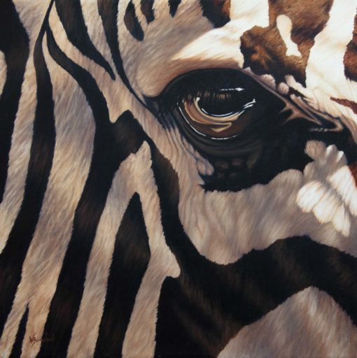 """Line of Sight"", oil painting of closeup of zebra eye by Wendy Beresford"