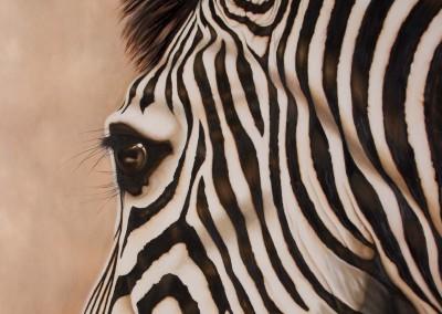 """Minstrel"", zebra closeup, original oil painting by Wendy Beresford"