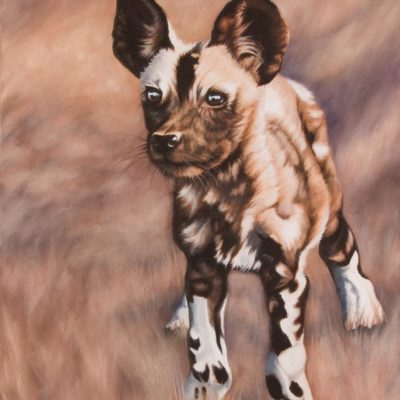 """New World"" by Wendy Beresford, oil painting of an African wild dog puppy"