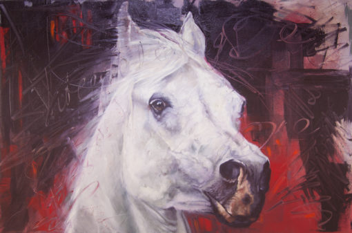 """Sovereign State"", white horse portrait on red, original oil painting by Wendy Beresford"