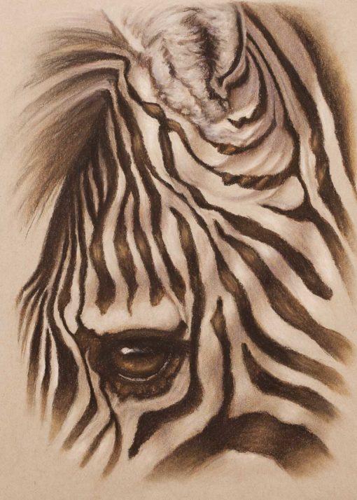 Zebra eye closeup, original pastel drawing on Strathmore Artist paper by Wendy Beresford