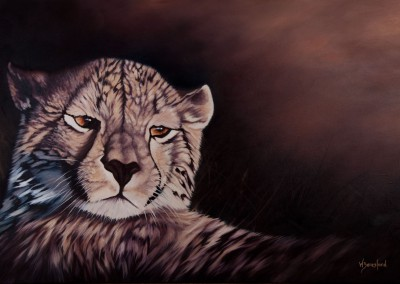"""Sundowner"", cheetah reclining in evening light, original oil painting by Wendy Beresford"