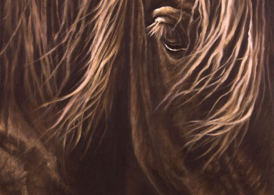 """Sunlit Bay"", closeup portrait of a bay horse, original oil painting by Wendy Beresford"