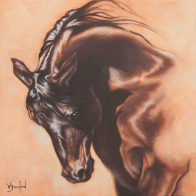 """Phoenix Rising"" portrait of a bay horse in oils by Wendy Beresford"