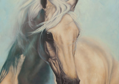 """Water Sprite"", portrait in oils of palomino horse by Wendy Beresford"