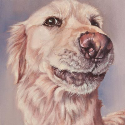 """Angel"", golden retriever portrait, oil painting by Wendy Beresford"