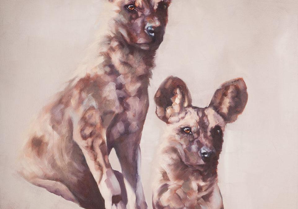 Wild Dog Duo