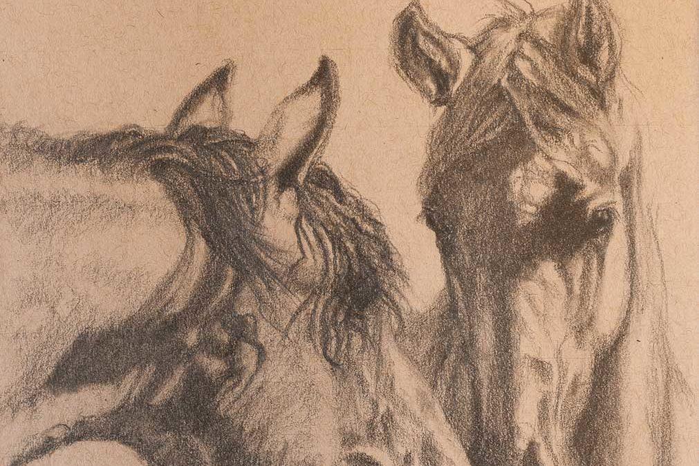 Graphite Equine 2