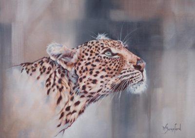 """Ingwe"", leopard portrait, oil on canvas, original 600mm x 800mm, by Wendy Beresford"