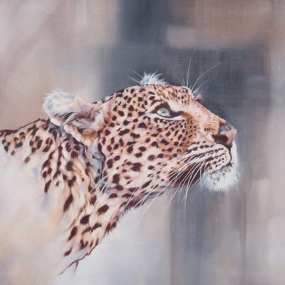 """Ingwe"", leopard portrait, print crop 1:1 aspect ratio, original oil painting by Wendy Beresford"