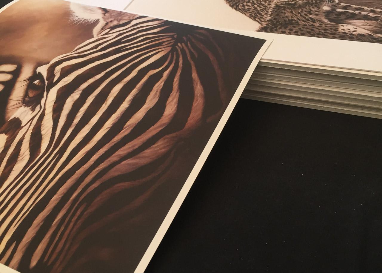 Epsom matt archival paper prints available in The Art Shop, Wendy Beresford Art