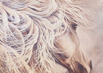 """""""Hero"""", oil on canvas, portrait of grey horse, by Wendy Beresford"""