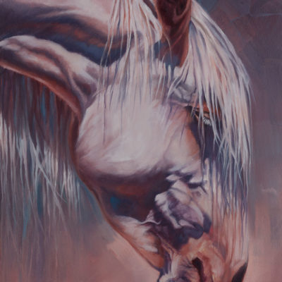 """Being"", oil painting of Arizona wild horse by Wendy Beresford. Photo reference by Robert Rinsem"